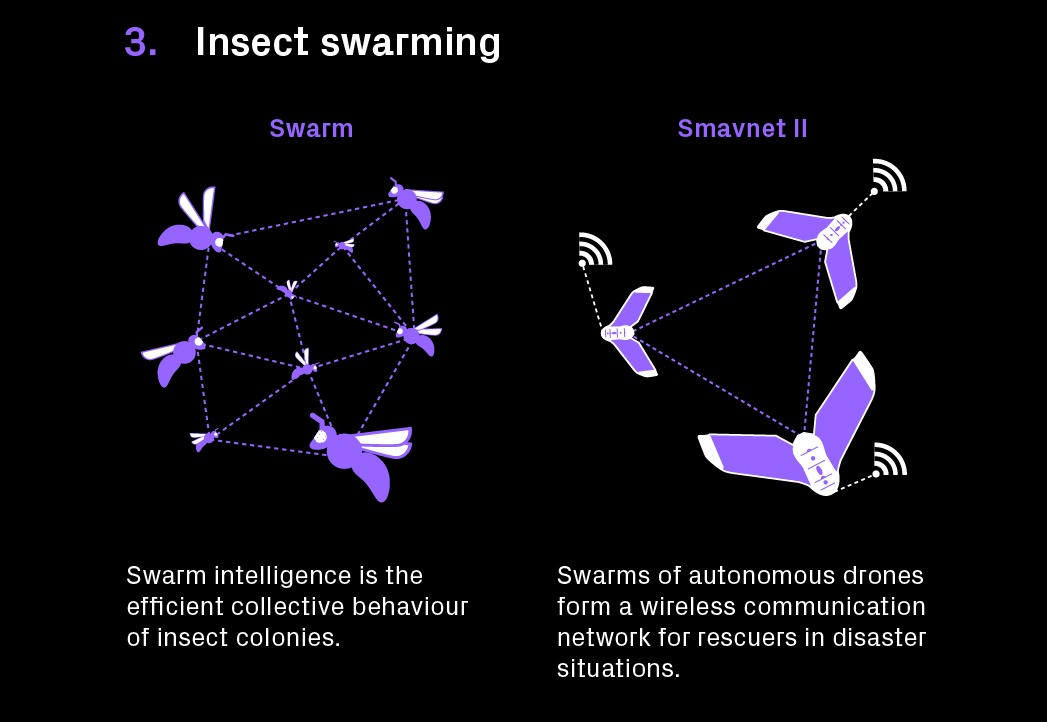 LN Technologist Infographie DronesInsectes 04 - Drones designed like bugs